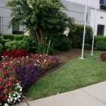 Flower Bed Installation by Office Entrance