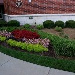 Landscaping by office building