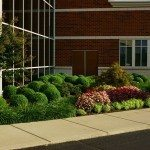 Landscaping by a building