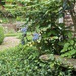 Close up of brick walkway and garden