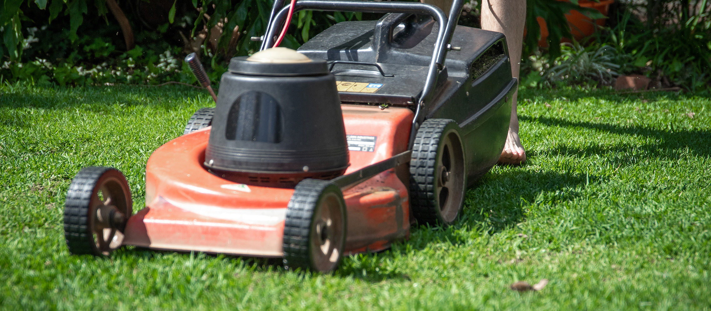 Dull_vs_Sharp_Blades_3_Advantages_of_Sharper_Blades_for_Your_Lawn_Care_Routine_1