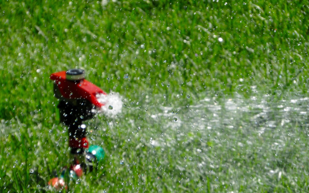 Summer Lawn Care - Water Sprinkler