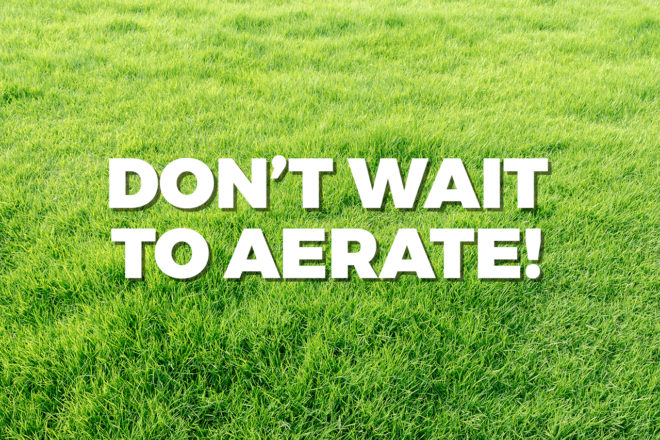 don't wait to aerate