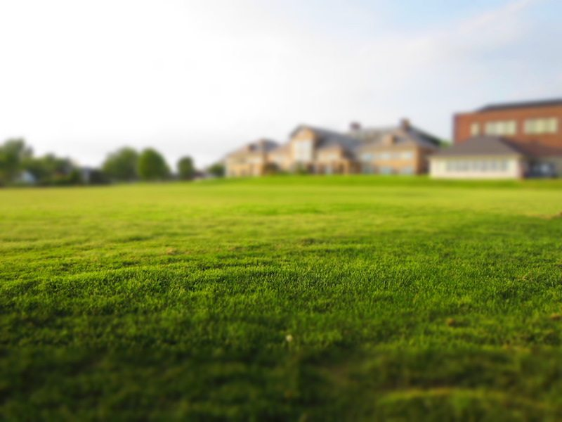 nashvilles-best-lawn-care-near-me