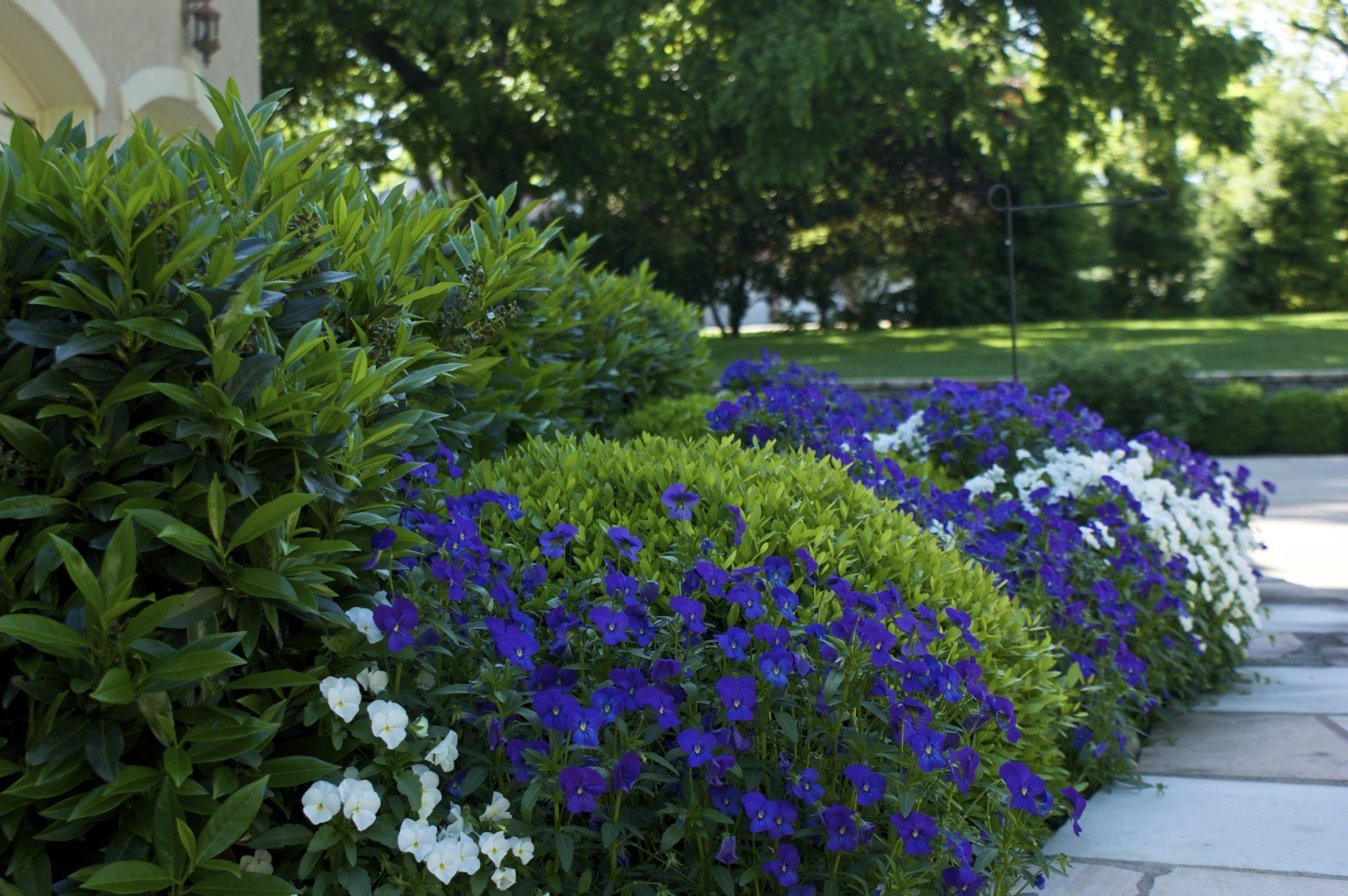 Flower Installation Services
