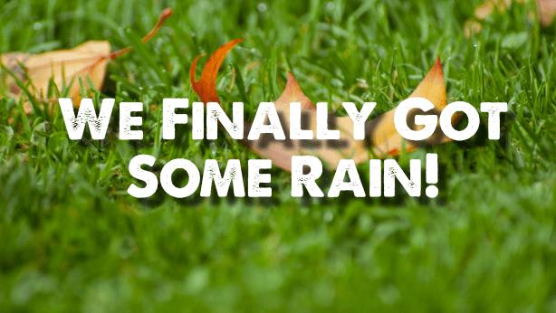 rain nashville lawncare